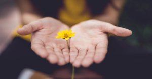 Affetmek ve Affetmeyi Öğrenebilmek